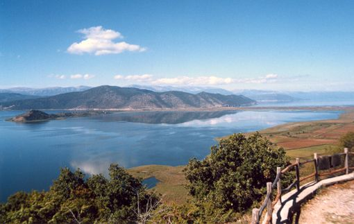 Great Prespa is a lake of unique beauty and vast biodiversity