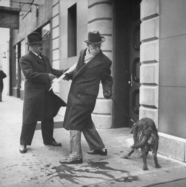 Artist Earle Winslow (R) showing his painting to a friend, while struggling to keep his Irish setter under control-NYC - Photo by Nina Leen - 1944