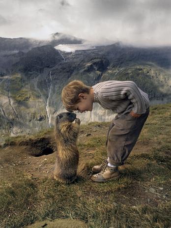 Matteo Walch, 8 anos, criou uma incomum amizade com um grupo de marmotas. Os animais são conhecidos por serem tímidos e evitarem humanos  Foto: The Grosby Group