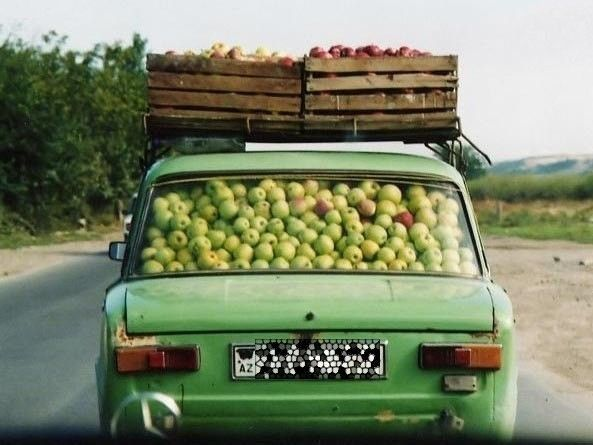Apples to Market - in Russia