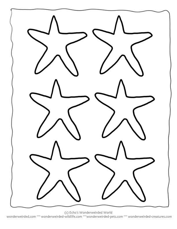 Printable Starfish Template, Echo's Free Starfish Outline