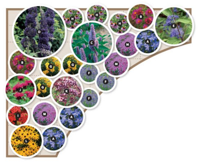 Voila bluestone perennials preplanned garden plan scores for Perennial garden design zone 9