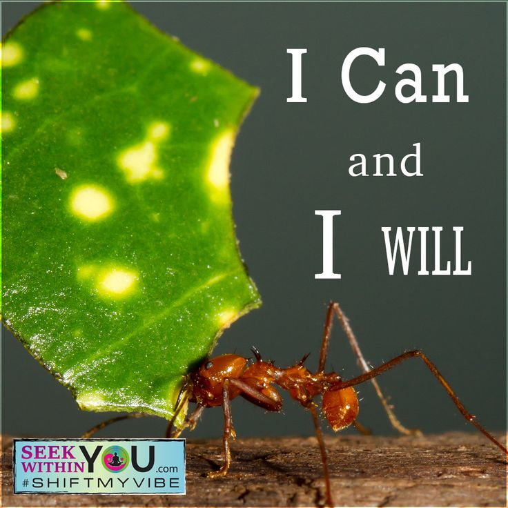 I can and I will! Very appropriate words for today! I can move mountains and I will!!  #shiftmyvibe #affirmation