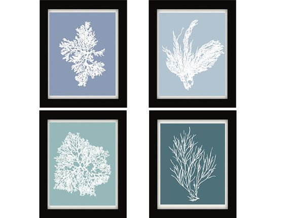 Antique Illustration White on Blue Sea Coral by BeachHouseGallery, $39.99