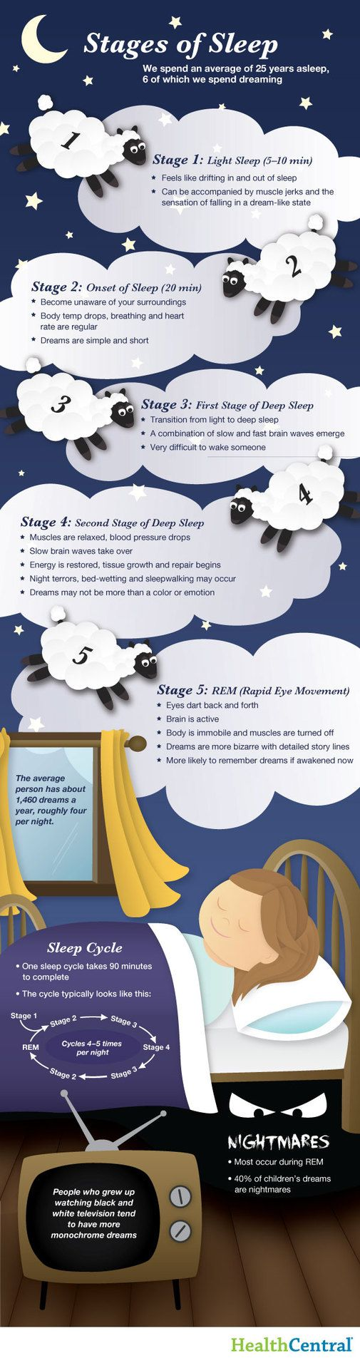 How you sleep: infographic that explains what happens when we sleep at