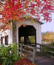 "Centennial Bridge in Fall by Janice DEmidio 2006. Known as the ""Covered Bridge Capital of Oregon,"" Cottage Grove boasts seven covered bridges in and around town."