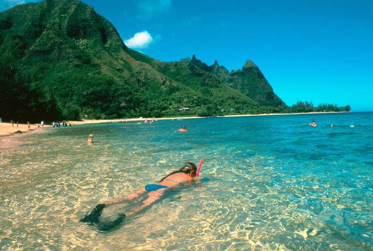 Kauai Snorkeling Beaches | ... up above–is better when you snorkel off of Tunnels Beach on Kauai