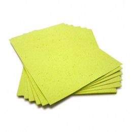 8.5 x 11 lime green plantable seed paper