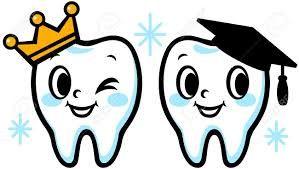 Resultado de imagen para diente dibujo