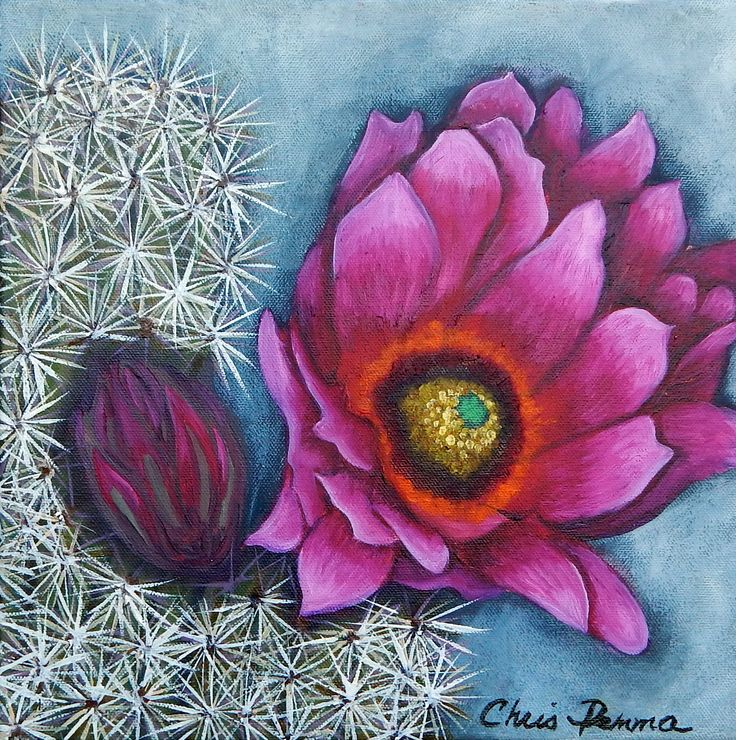 """Pink Jubilee II  12 x 12"""" oil available"""