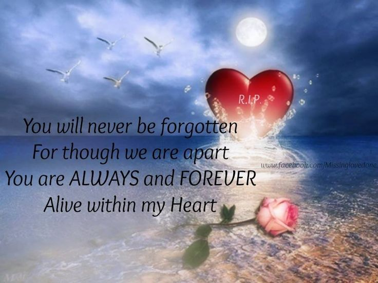 Never forgotten, how could I, when you are my heart