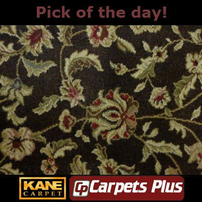 Carpets Plus Kane Carpet Pattern Pick Of The Day