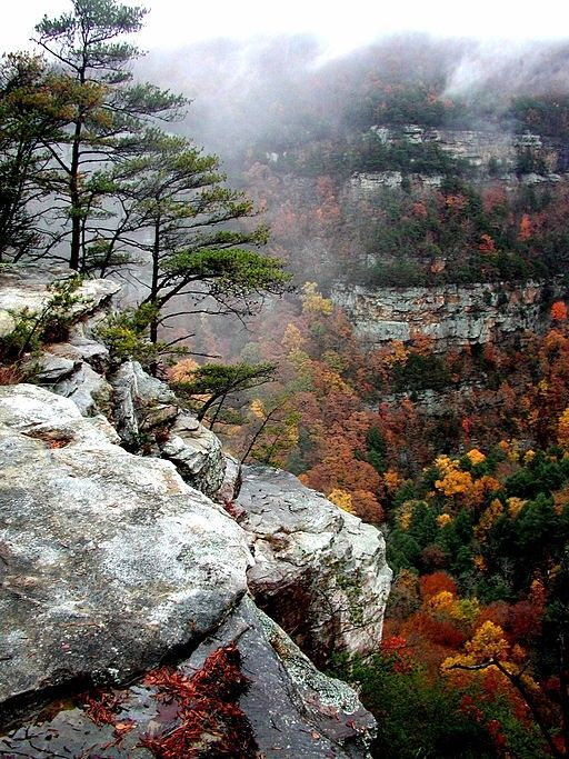 Cloudland Canyon State Park, Georgia, USA A hidden gem.