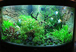 Nobby 28171 Aquarium Dekoration Aqua Ornaments, Holz: Amazon.de: Haustier