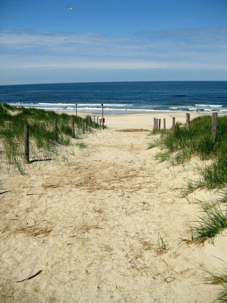 beach on the dutch island texel