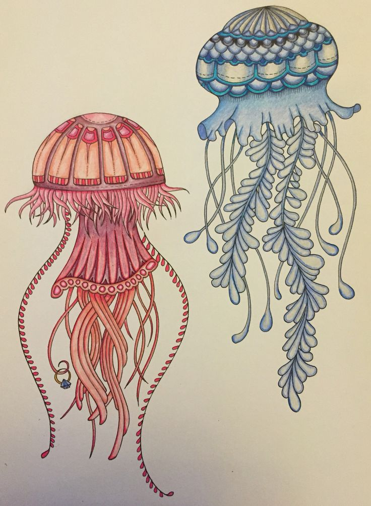 So Excited About The Release Of Lost Ocean Started With A Couple Of Jellyfish Lost Ocean Coloring Book Johanna Basford Coloring Book Ocean Drawing