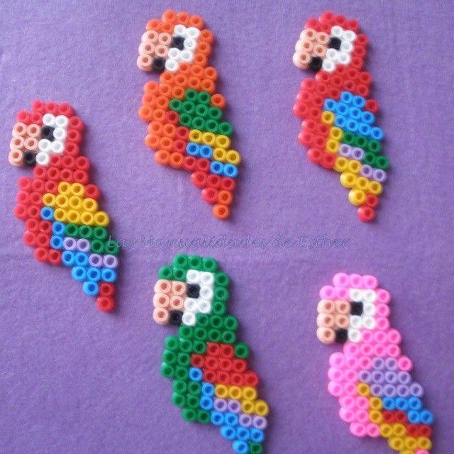Parrots hama beads by kecosikas