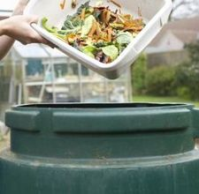 compost accelerator recipe: in a 5 gallon bucket add one gallon of warm water, 1 can of flat warm beer, 1 can of flat warm cola and 1/2 c amonia.  mix well and pour over compost pile top with 2-3 scoops of soil. toss & mix.  Can be added once a week.