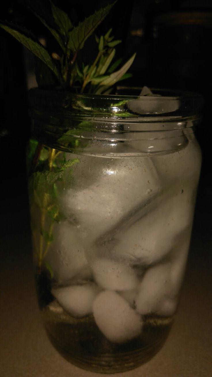 Mint gin-tonic