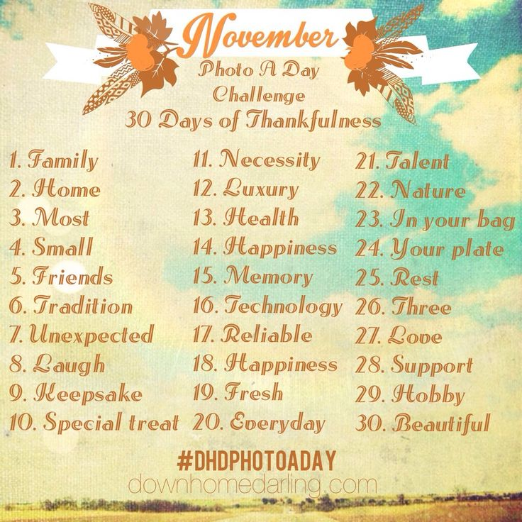 November Photo a Day Challenge 30 Days of Thankfulness by Down Home Darling