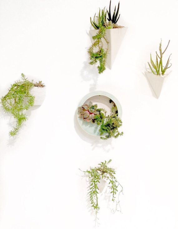 Round Capsule Wall Hanging Planter Vertical Garden by MuddyHeart