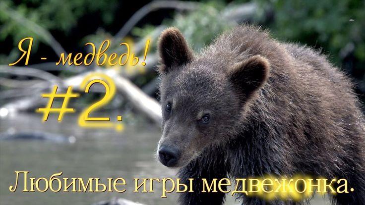 Любимые игры медвежонка //Я  медведь! #3//Детям о животных// PRIRODA SHOW
