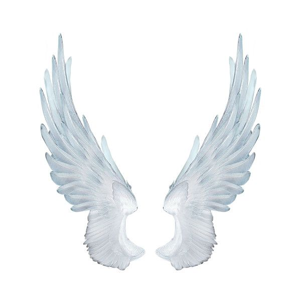 Best 25 Angel Wings Png Ideas On Pinterest Angel Wings
