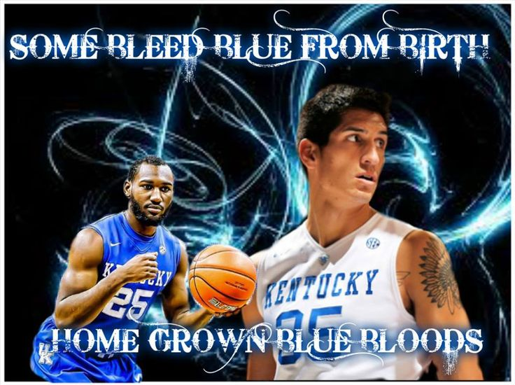 1000 Images About Kentucky Wildcats On Pinterest