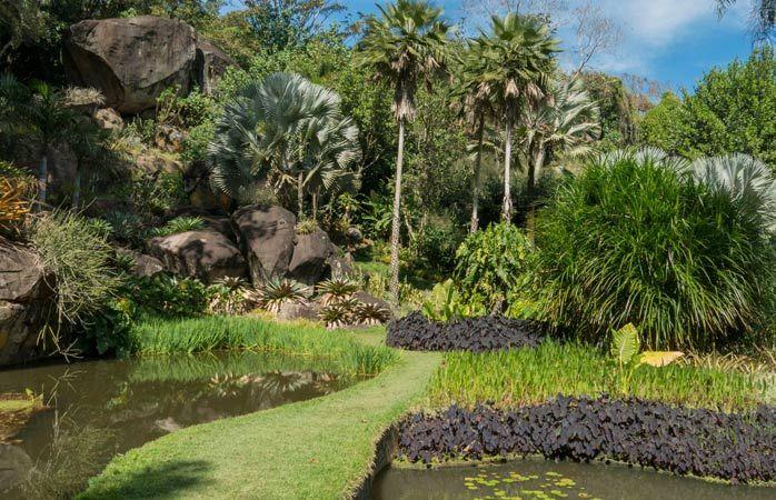 Con i suoi vasti giardini tropicali, il Sítio Roberto Burle Marx è una delle più tranquille gite di un giorno da Rio de Janeiro