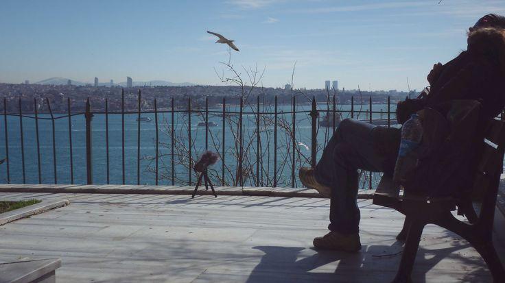 View from Cihangir - Recoding Bosphorus