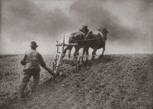 Image result for vintage plough mull board