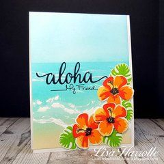 Aloha My Friend - Hero Arts Hibiscus