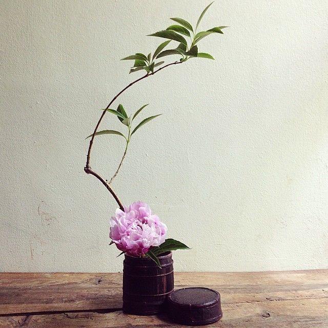 昼下がりの一杯ロンボク島のコーヒーコンテナに#tumblerandflowers #flower #branch #forsythia #peony #ikebana #いけばな #wataraikebana by watarai_toru