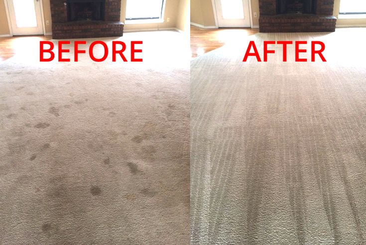 There are a lot of carpet cleaning Tulsa, Oklahoma businesses. But not all are equal or care about their customers. We provide a high-end quality carpet cleaning service. Steam cleaning services include carpet cleaning, steam cleaning, pet odor removal, residential cleaning, business cleaning and more!
