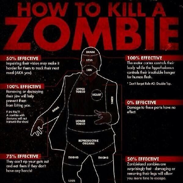 """Survival Tips on Twitter: """"Incase of a zombie apocalypse http://t.co/dDGhoELahI"""""""