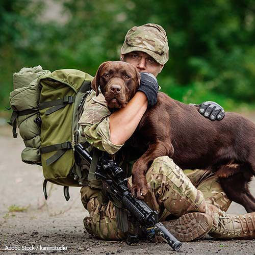 Keep Military Families Together - End Breed Restrictions On Bases! - Our service members shouldn't have to choose between their pets and their homes. Take action now!