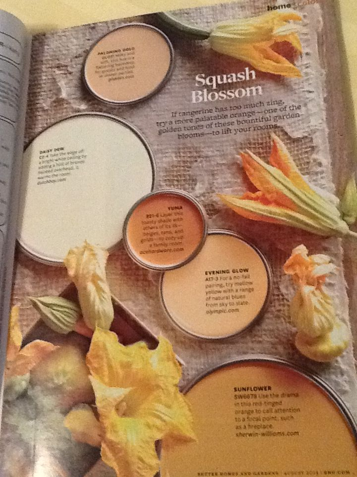 Love These Paint Colors, Especially The Palomino Gold. Better Homes And  Gardens, August 2013