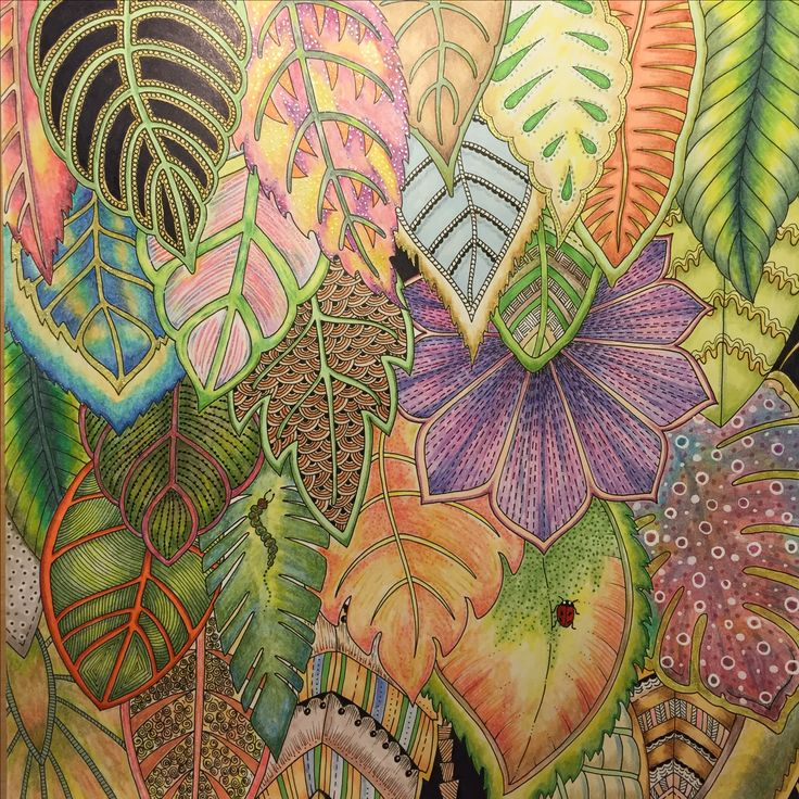 Best 200+ The Magical Jungle images on Pinterest | Coloring books ...