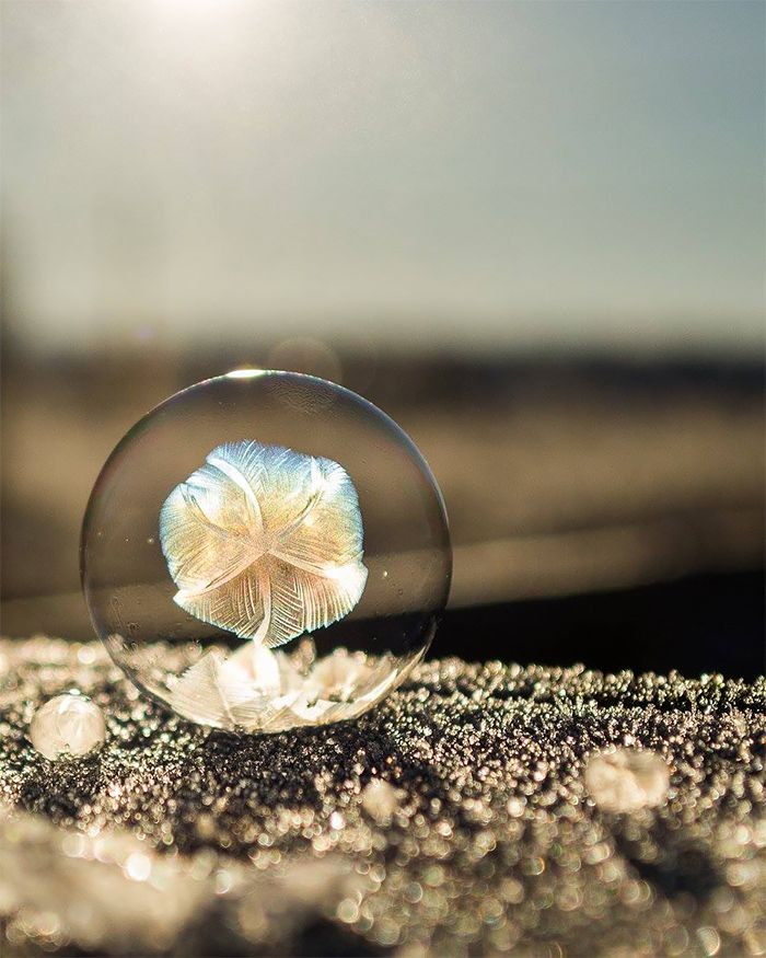 Frozen Bubbles: Incredible Photos by Angela Kelly                                                                                                                                                                                 More