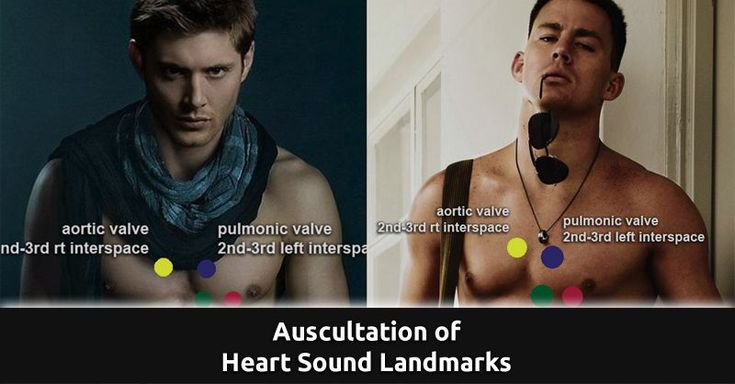Who do you want to auscultate? A, B, C, D, or all of the above? http://qdnurses.com/nclex/auscultation-of-heart-sound-landmarks/ --- #qdnurses
