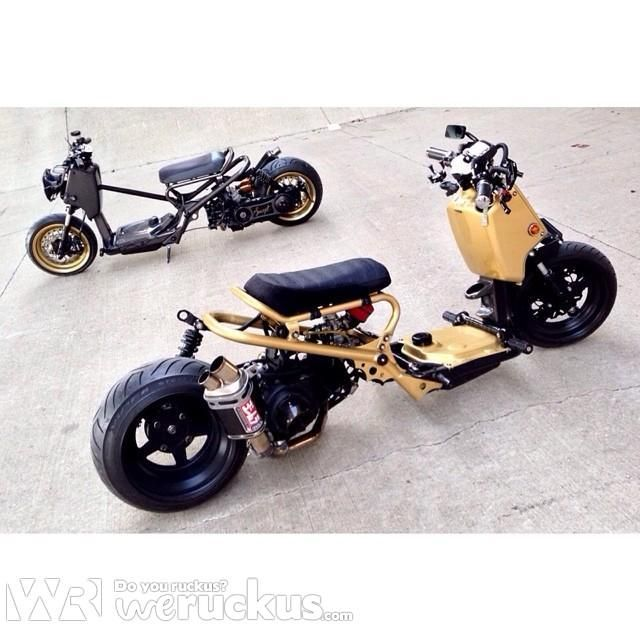 17 best images about honda ruckus custom culture on for Garage scooter nice