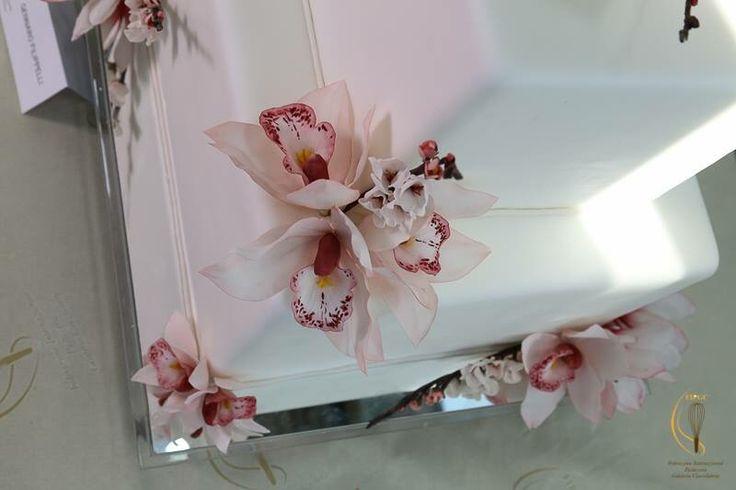 Campionato Nazionale FIPGC - Orchidea Cymbidium