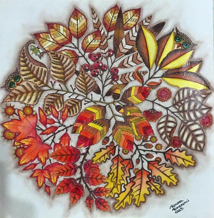 Mandala Owls Secret Garden De Corujas Jardim Secreto Johanna Basford Adult ColoringColouringColoring BooksJohanna