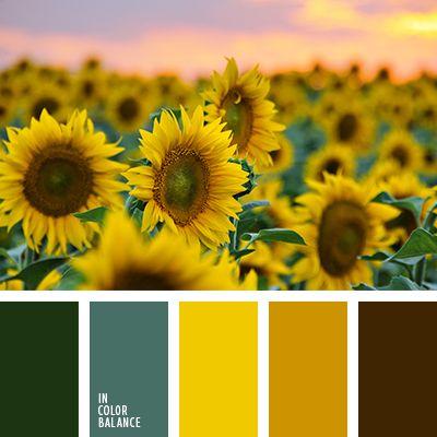 amarillo, amarillo cálido, amarillo sol, anaranjado cálido, anaranjado fuerte, color girasol, marrón sucio, naranja oscuro, negro, selección de colores, tonos anaranjados, tonos cálidos, verde, verde botella, verde menta.