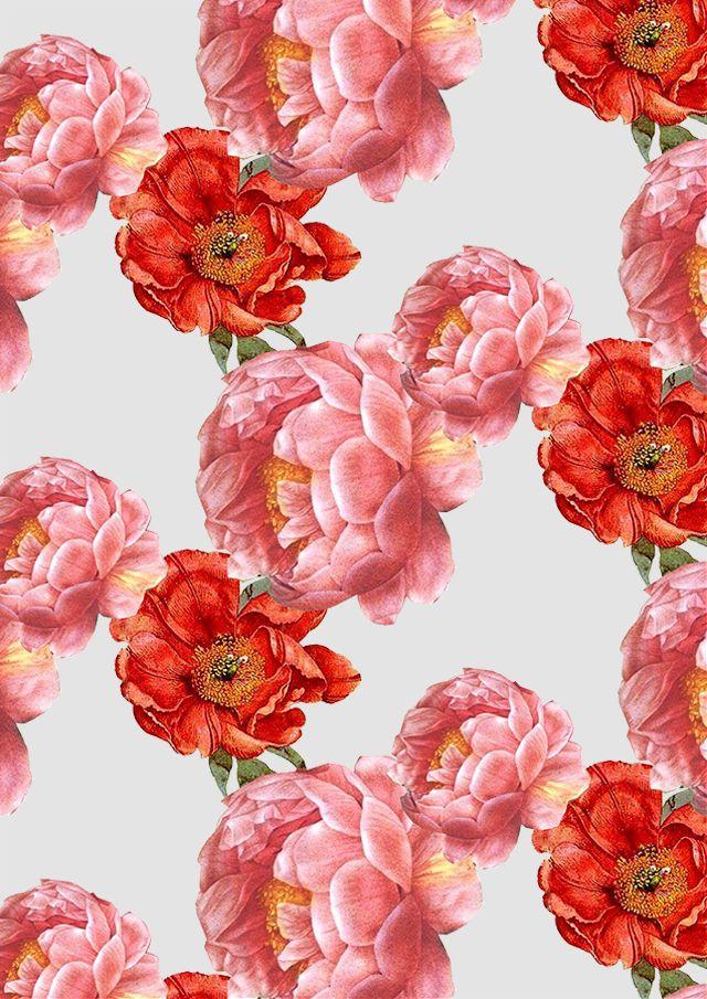 vintage floral pattern | cardboardcities - illustration, fashion, colour + lifestyle