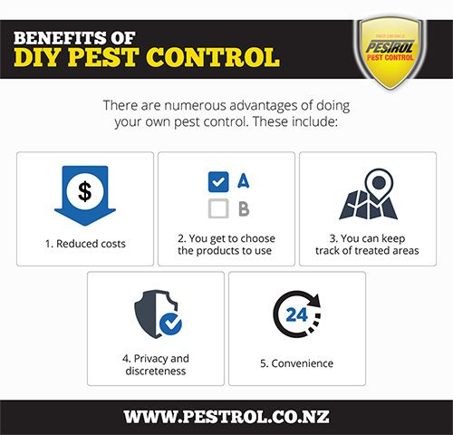 Do DIY Pest Control Products Really Stack Up Against Professional Pest Control?