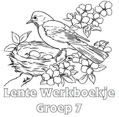 Lente Werkboekje Groep 7