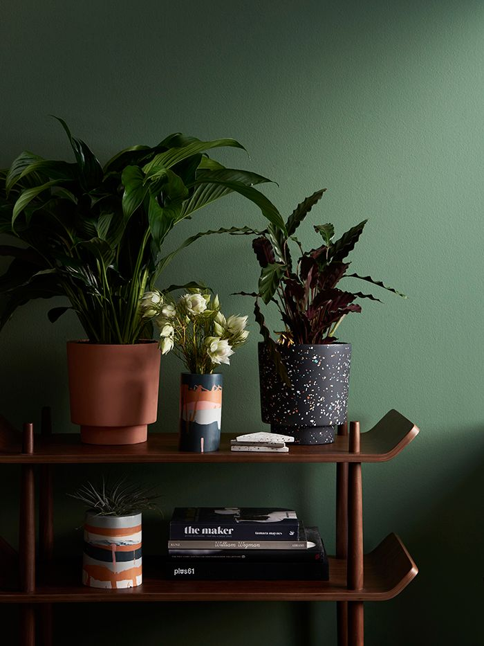 Capra Designs Rocky Road collection brings lovely new twists to some old favourites while maintaining signature designs and colours in pots and planters. Pantone Color Chart, Peach Walls, Metal Plant Stand, White Vases, Ceramic Design, Modern Ceramics, Plant Wall, Signature Design, Bedroom Colors