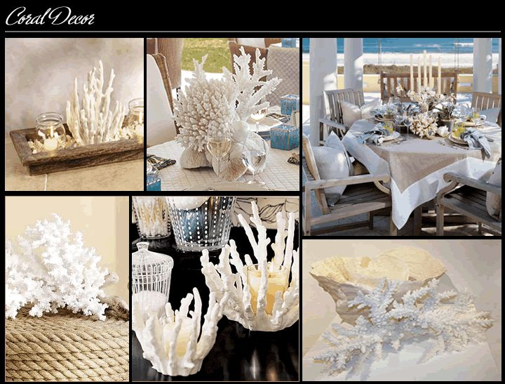 Coral Decor From Pet Store Spray Paint And Display