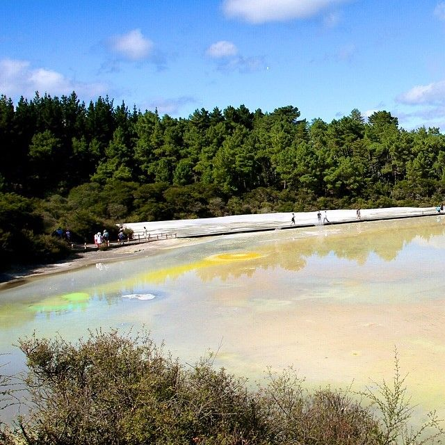 Geothermal lakes in Rotorua, New Zealand